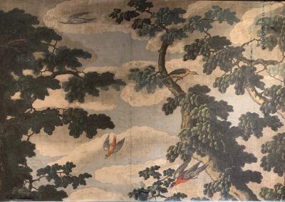 Toile peinte perroquet (6)